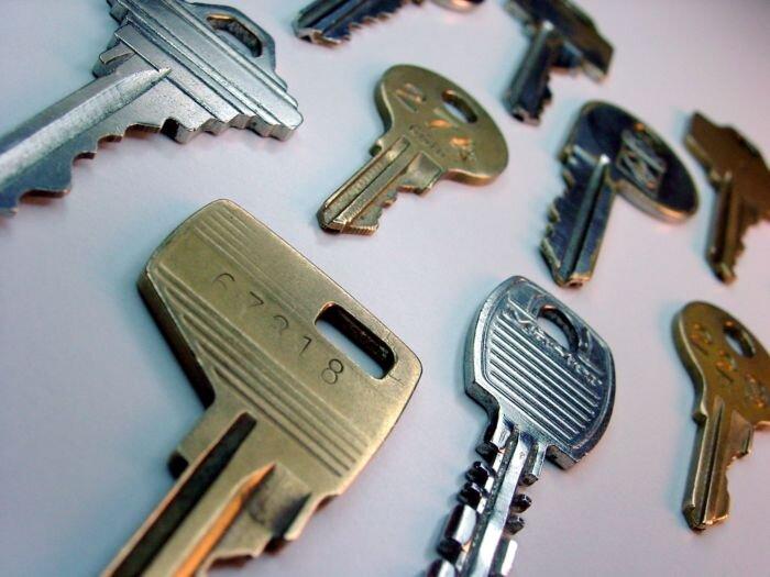 3c4e21b7fa3ce Evo-komputerowe kodowanie Szeroka gama dorabianych kluczy